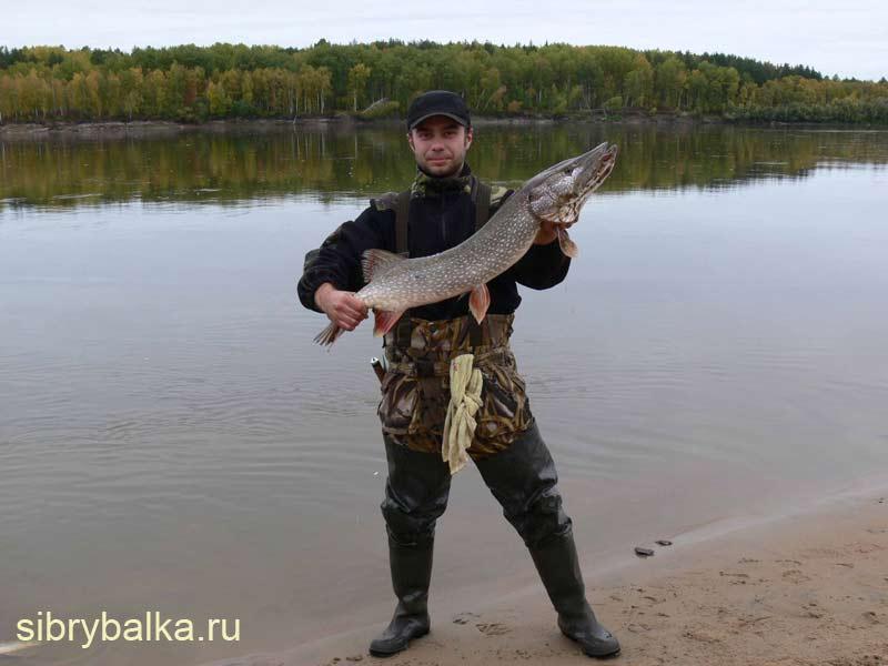 рыбалка в асино места